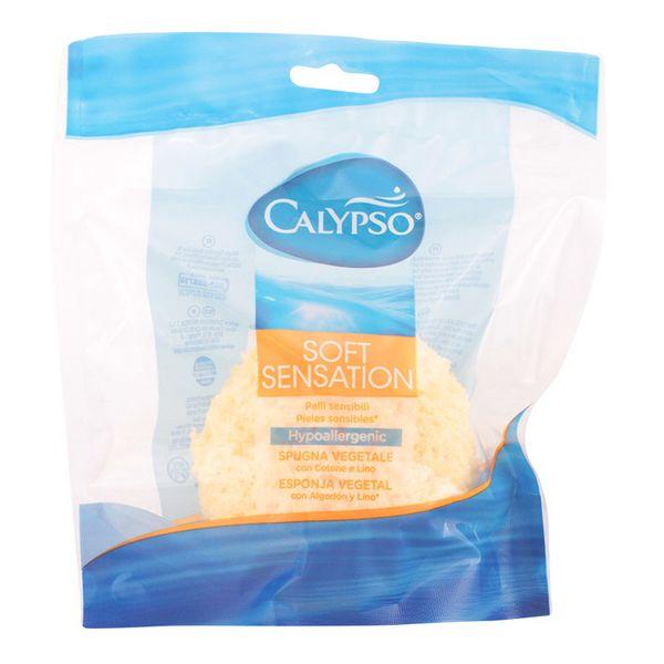 Body Sponge Calypso Calypso