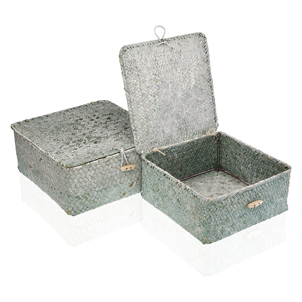 Basket set Marine algae (2 Pieces) (23 x 10 x 23 cm)