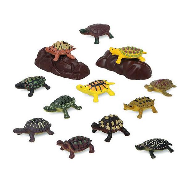 pequeño masajeador de próstata para tortugas