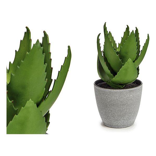 Decorative Plant Aloe Vera Plastic (14 x 23 x 14 cm)