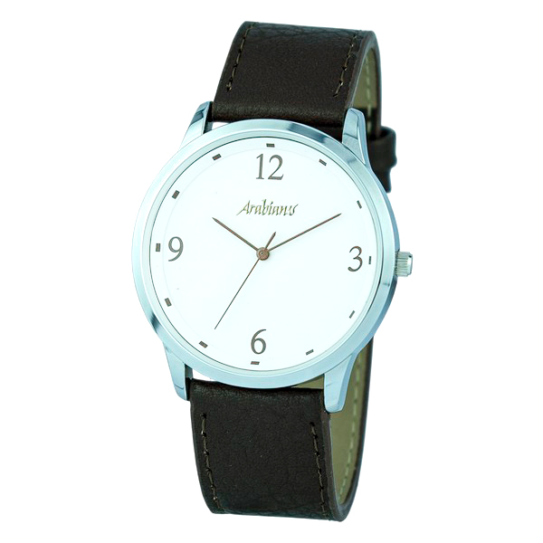 Men's Watch Arabians HBA2249M (42 mm)