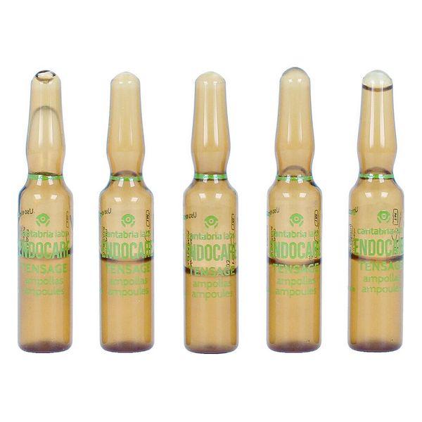 Ampoules Endoncare Tensage Regenerative (10 x 2 ml)