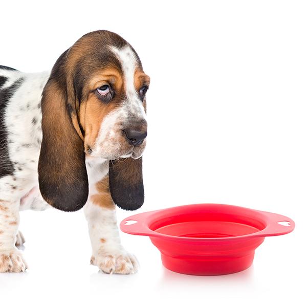 Zložljiva Skleda za Hrano za Hišne Ljubljenčke Heart